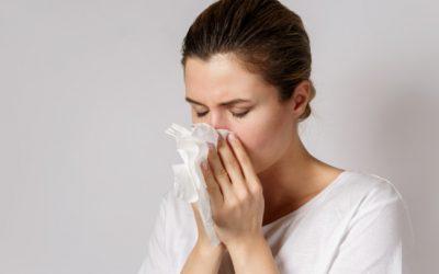 La alergia a ácaros: alergia en otoño